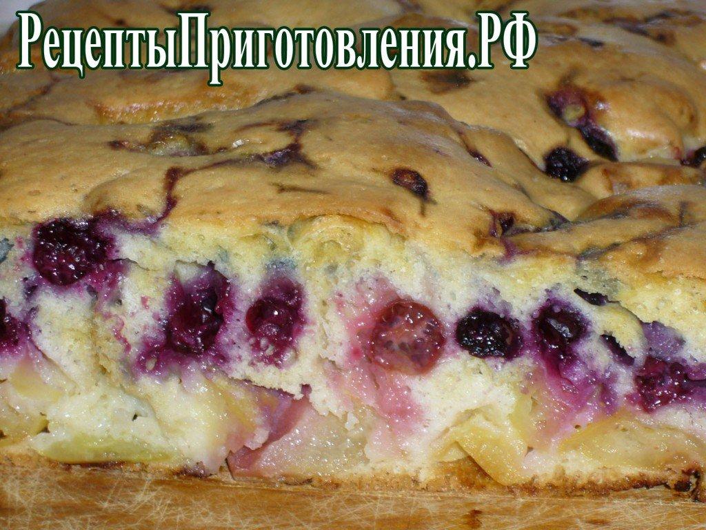 Пирог шарлотка с яблоками и смородиной